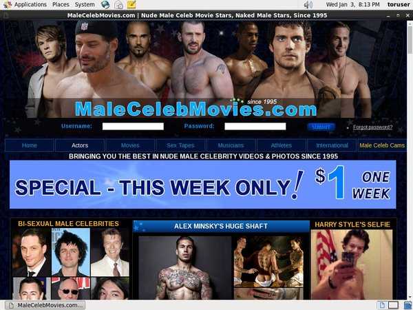 Male Celeb Movies Credits