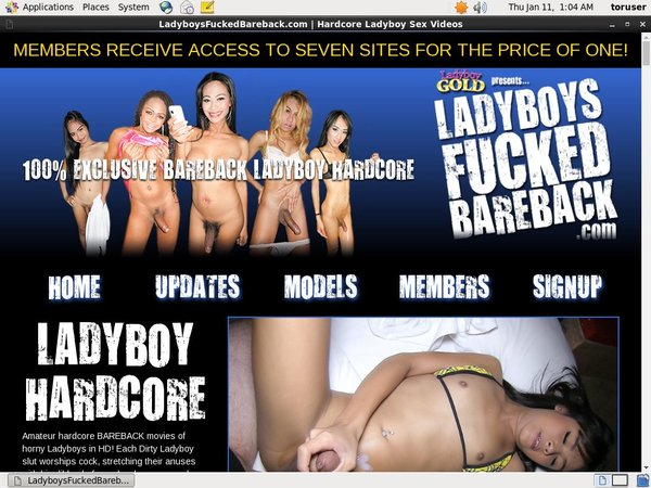 Ladyboys Fucked Bareback Picture