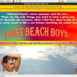 Best Beach Boys 購入